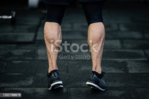 trained legs with muscular calves in sneakers in training gym