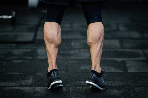 trained legs with muscular calves in sneakers in training gym during hard fitness and gym workout trained legs with muscular calves in sneakers in training gym calf stock pictures, royalty-free photos & images