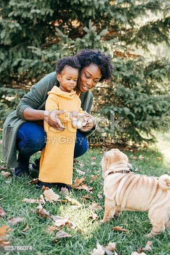 istock Training a puppy with toddler 623766074