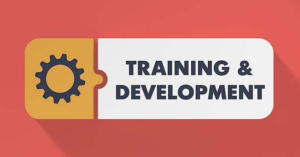 training and development concept in flat design. - flat design stock photos and pictures