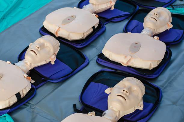 Compressões do peito do treinamento do CPR para primeiros socorros na emergência. - foto de acervo