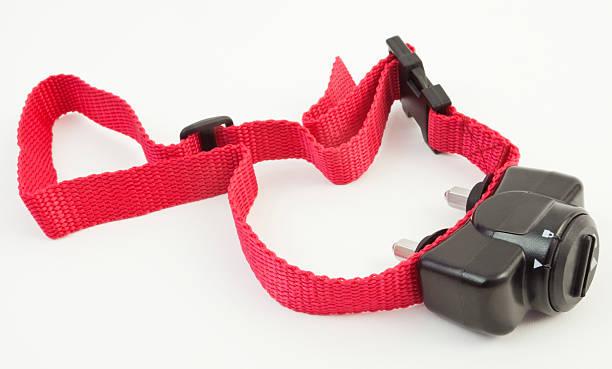 kragen - halsband stock-fotos und bilder