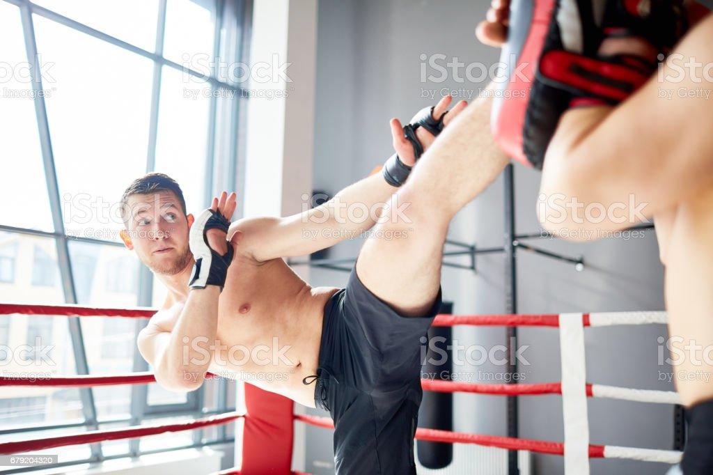 Training in Boxing Ring foto de stock royalty-free