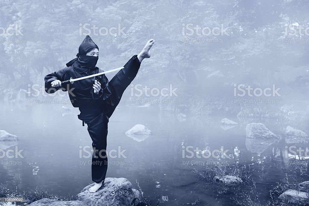 Training Ninja stock photo