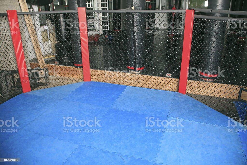 UFC Training Ring royalty-free stock photo