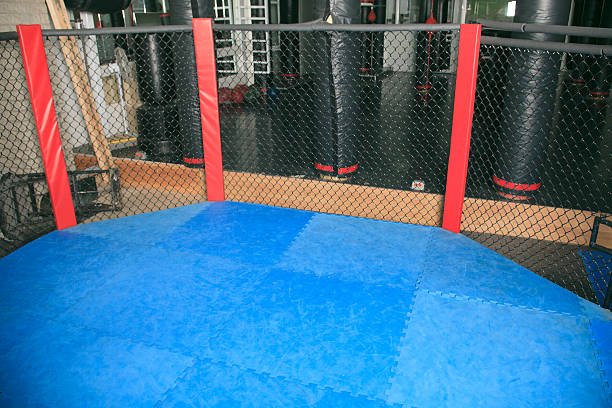 UFC Training Ring stock photo