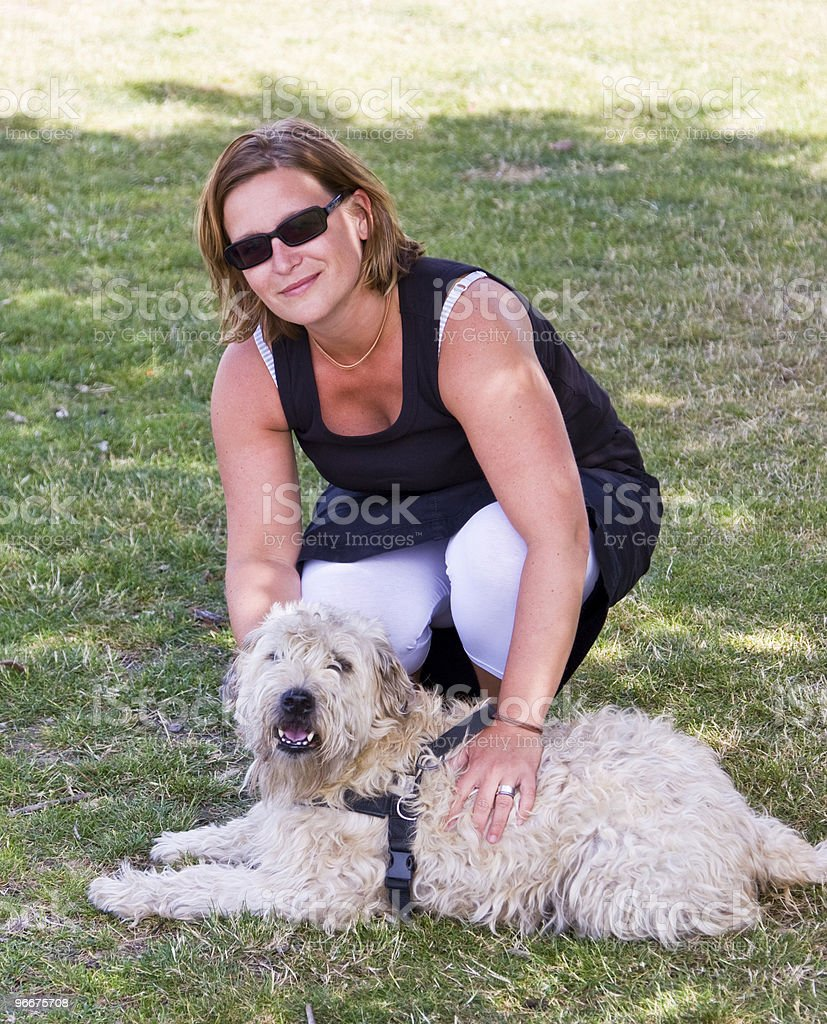 Training The Dog royalty-free stock photo