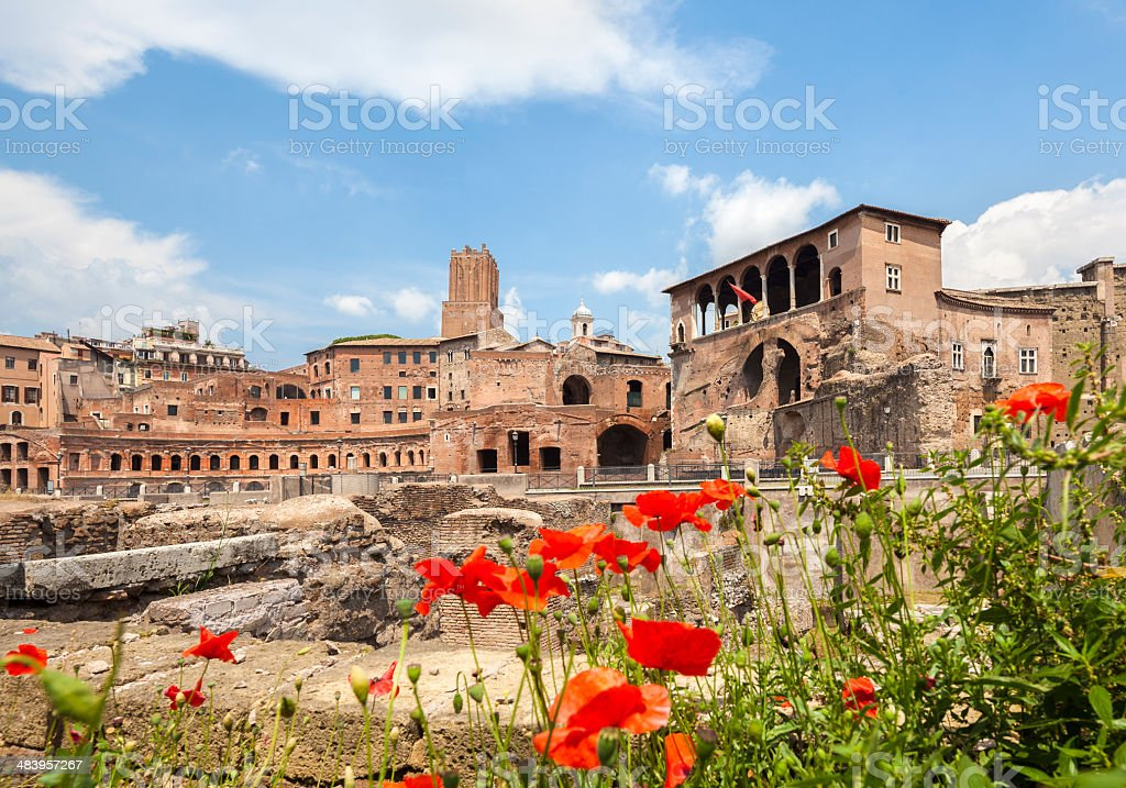 Trajan's Forum and poppies, Rome Italy stock photo