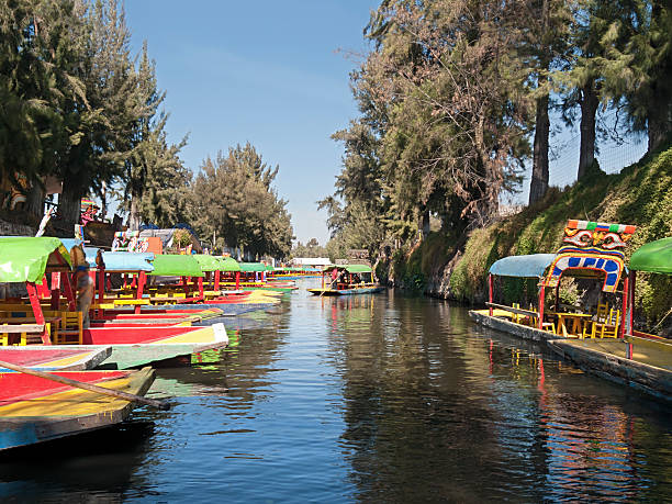 Trajinera boats in Xochimilco, Mexico City stock photo