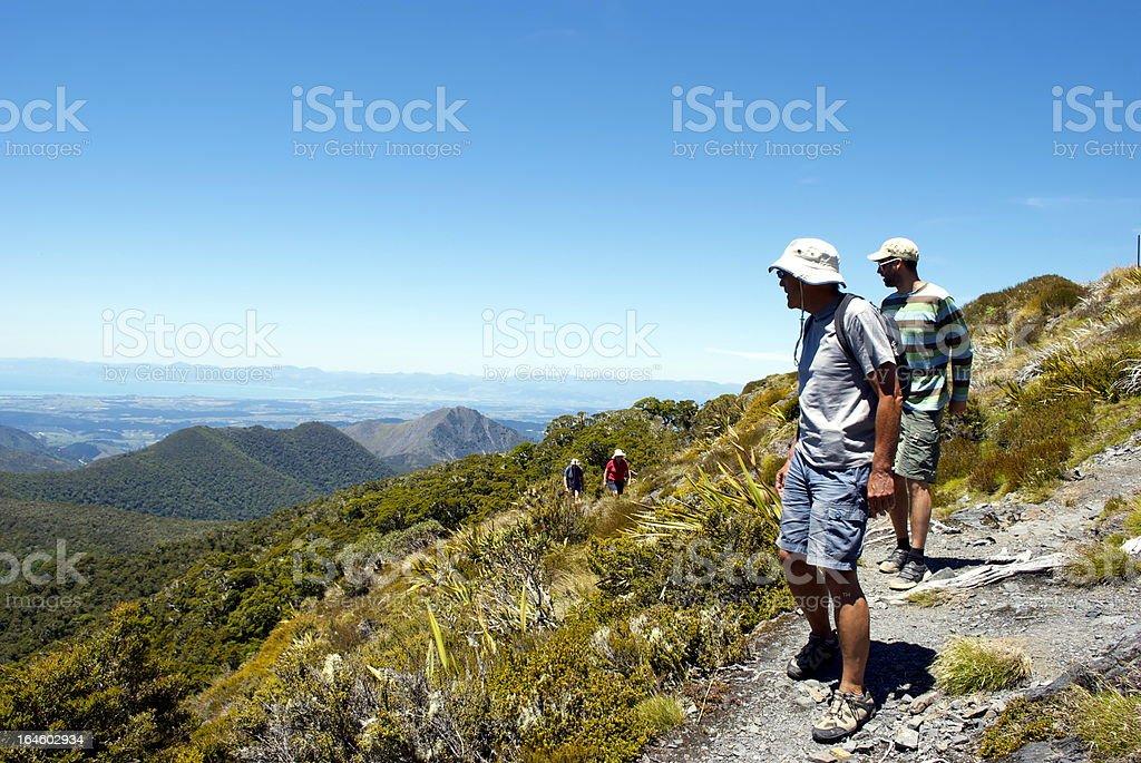 Trampers on Mt Arthur Track, Motueka, New Zealand. stock photo