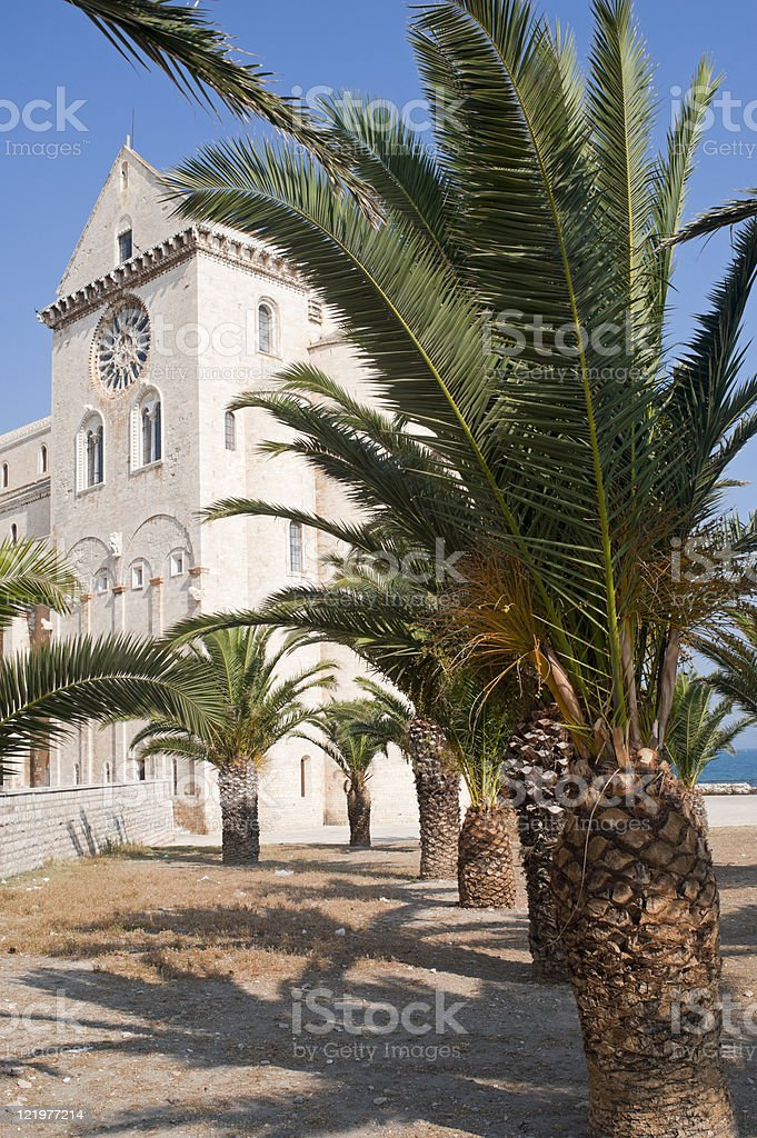 Trani (Puglia, Italy) - Medieval cathedral and palm trees royalty-free stock photo