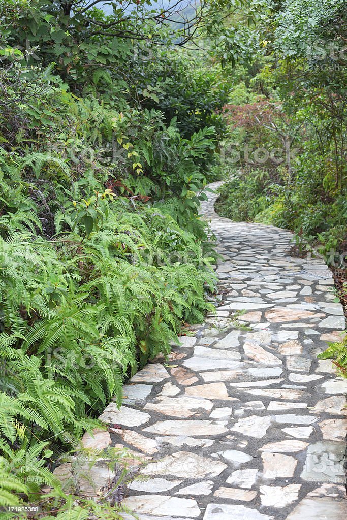 Tranquil Garden Walkway royalty-free stock photo