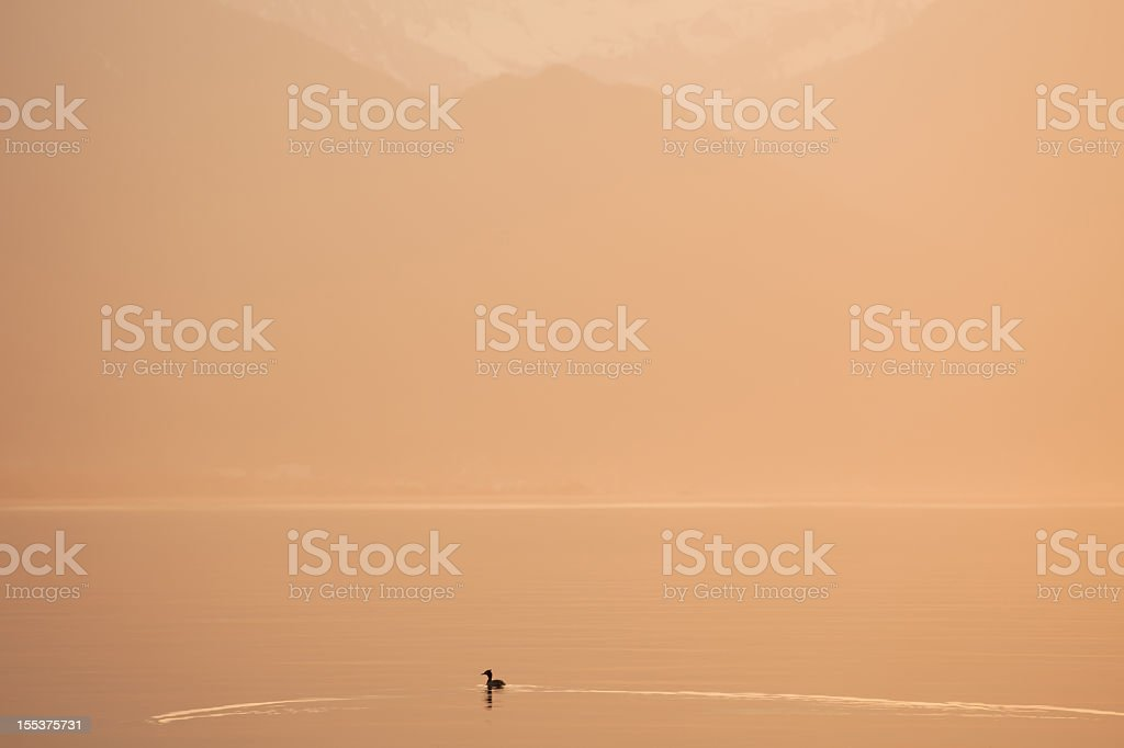 Tranquil lake and mountains royalty-free stock photo