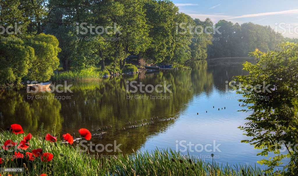 Tranquil Lake Photo stock photo