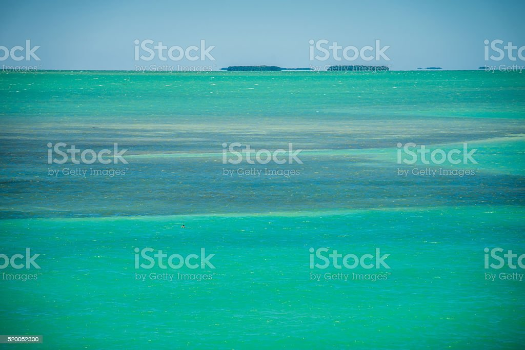 tranquil nature in florida keys stock photo