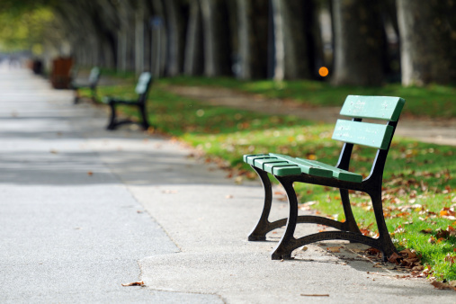 Tranquil Park Bench - XLarge