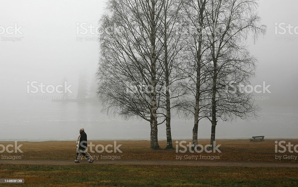 Tranquil Scene from a Lake in November royalty-free stock photo