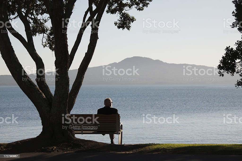 Tranquil Scene royalty-free stock photo