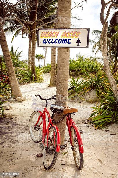 Tranquil Scene With Two Bicycles Beach And Palms Stock Photo - Download Image Now