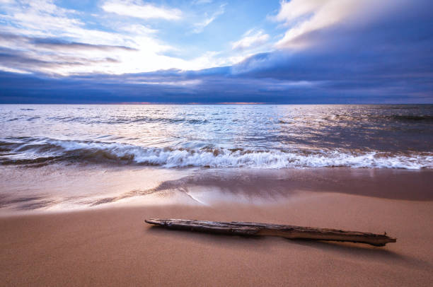 tranquil sea with driftwood. gentle wave motion on bright sandy beach. - lake michigan stock pictures, royalty-free photos & images