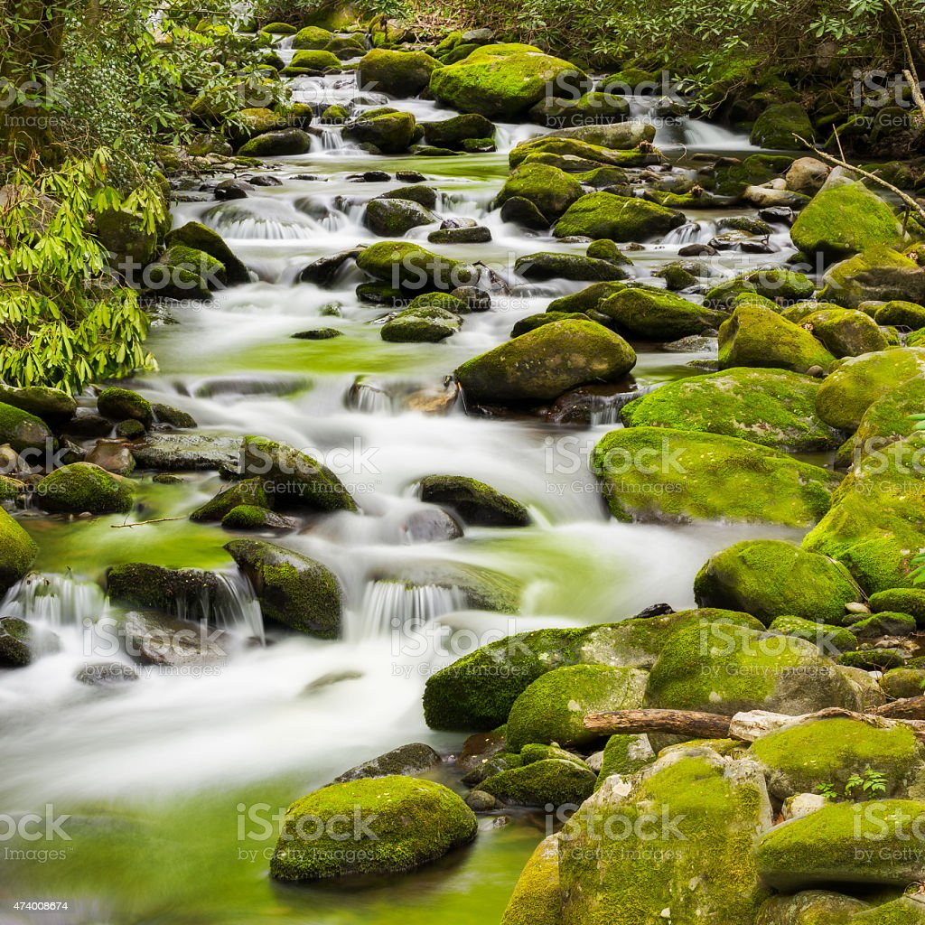 Tranquil Stream in the Smokies stock photo