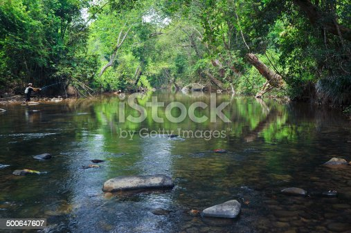 istock Tranquil tropical river in the forest 500647607