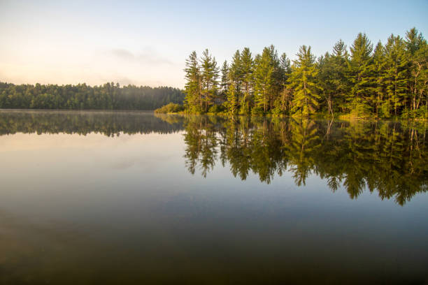 tranquil water of a northern michigan wilderness lake with copy space in the foreground and a lush wilderness forest at the horizon. - lakeshore stock photos and pictures