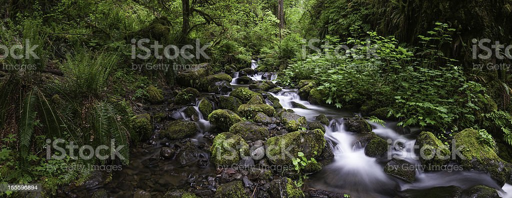 Tranquil waterfall in lush green forest wilderness stock photo