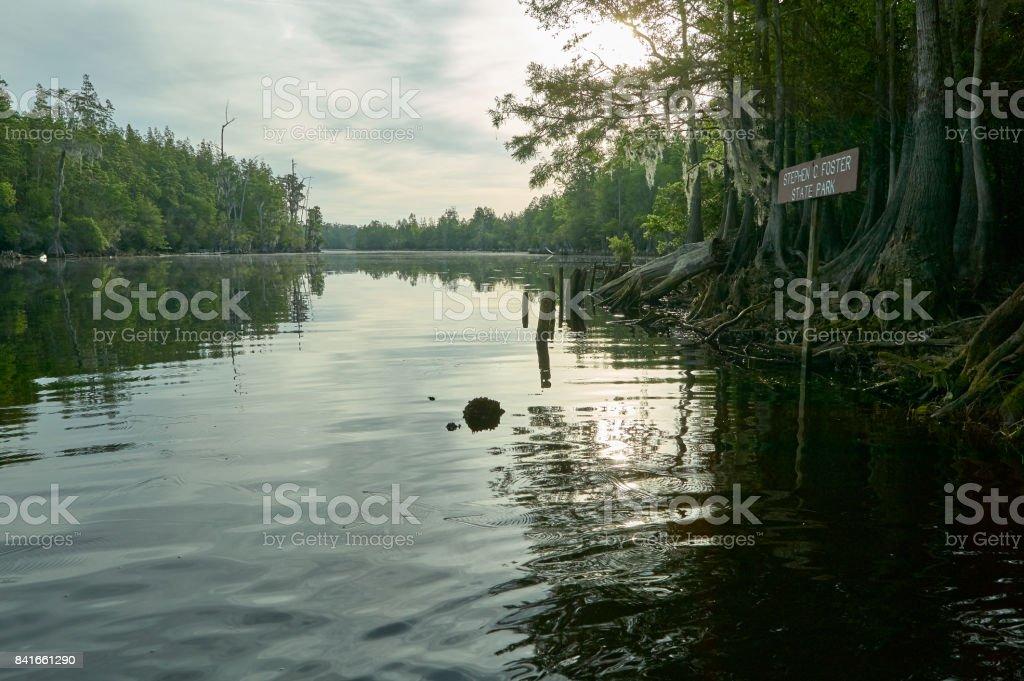 Tranquil wetlands landscape in Okefenokee stock photo