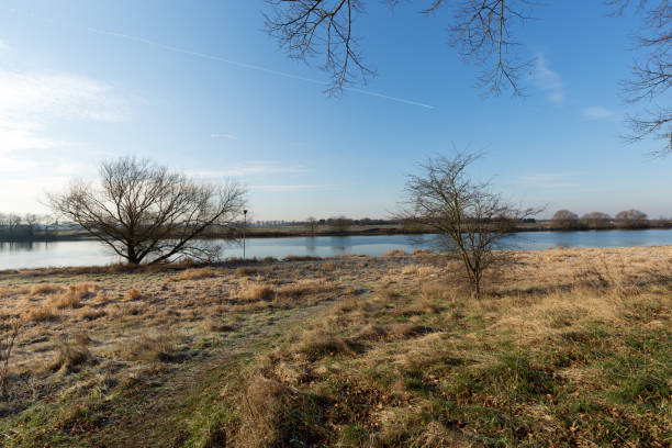 Tranquil Winter Impression at River Maas / Netherlands Tranquil Winter Impression at River Maas / Netherlands meuse river stock pictures, royalty-free photos & images