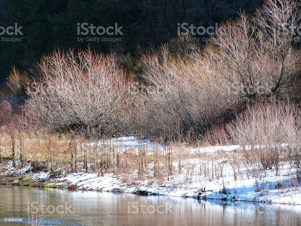 Tranquil Winter Season Woodland Nature River Landscape Scene stock photo