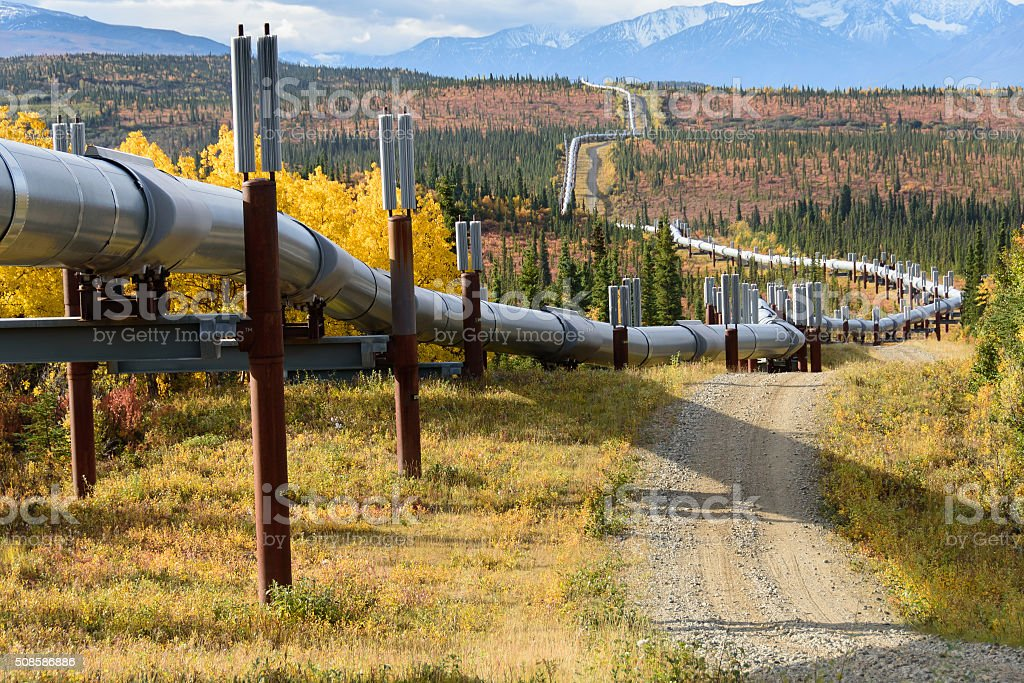 Trans Alaska Pipeline with Autumn Colors stock photo