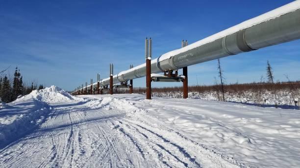 Trans-Alaska Pipeline stock photo