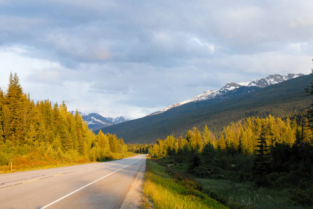 Trans-Canada highway No.16 in the Spring Evening, Mount Robson Provincial Park, Canadian Rockies, British Columbia, Canada stock photo