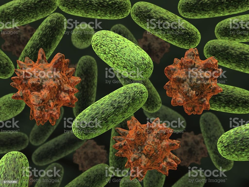 transformed bacteria royalty-free stock photo