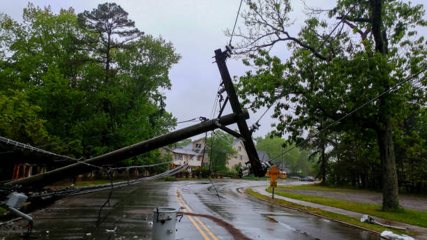 transformer on a pole and a tree laying across power lines over a road after hurricane moved across - ekstremalne warunki pogodowe zdjęcia i obrazy z banku zdjęć