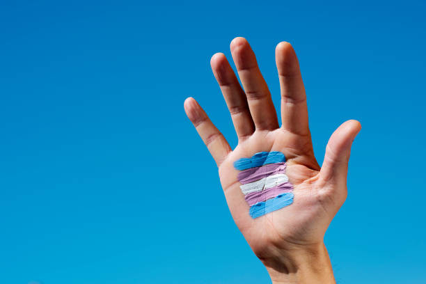 transgender flag in the palm of the hand stock photo