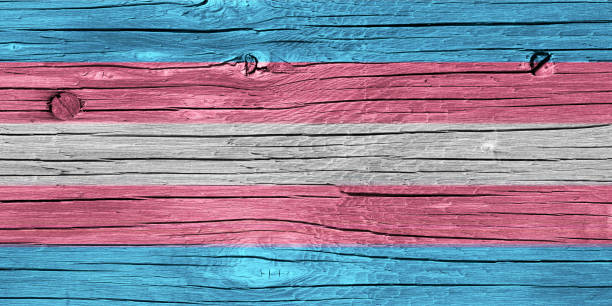 Transgender Pride Flag Wood Texture – Foto