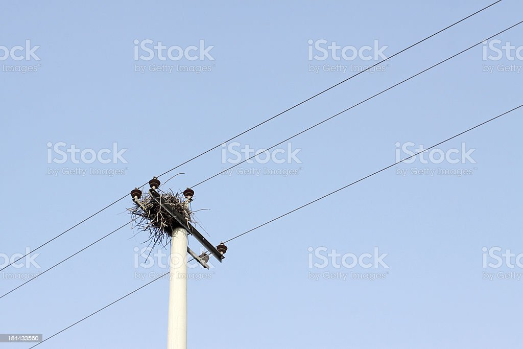 transmission lines royalty-free stock photo