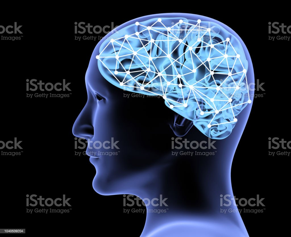 Transparent 3d head of the man and brain stock photo