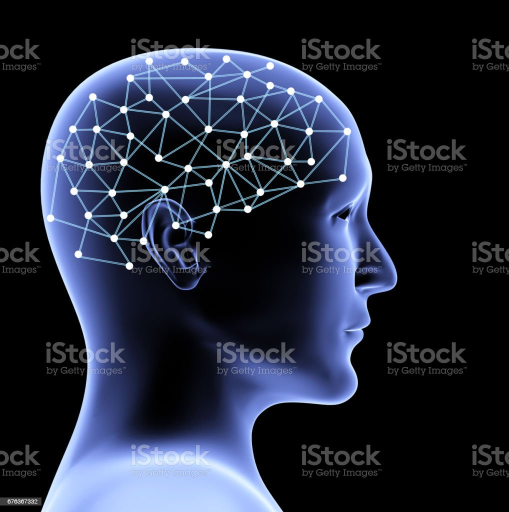 Transparent 3d head of the person and brain stock photo