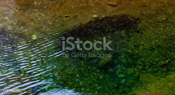 1037450870 istock photo Transparent, calm and clean water at rainy day 1147880267