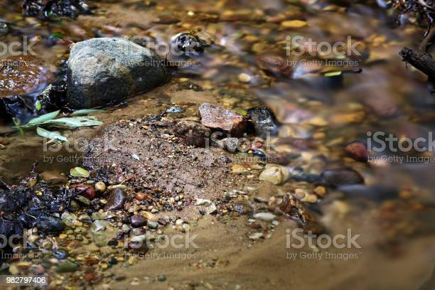 Photo of Transparent cold forest creek with stones leaves and sand under milky water shot on a long exposure with a nd filter