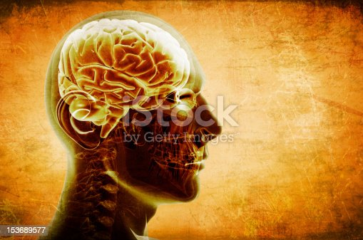 istock Transparent profile of a head and brain 153689577