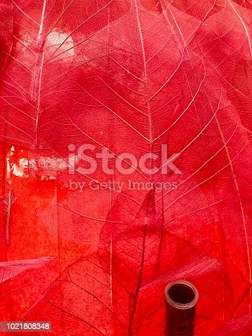 1155045999istockphoto Transparent red leaves 1021808348