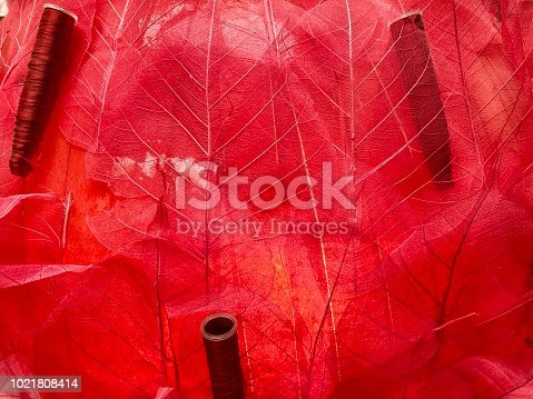 1155045999istockphoto Transparent red leaves 1021808414