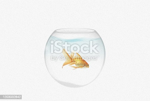 istock transparent round aquarium with goldfish isolated on white background 1203032842