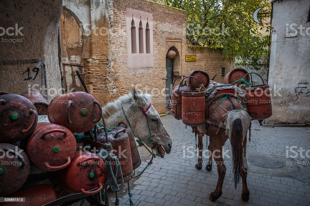Transport of gas bottles in the medina, Fez stock photo