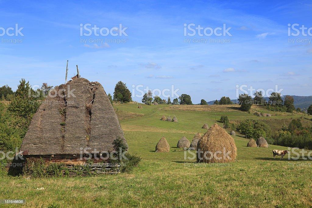 Transylvanian Landscape royalty-free stock photo