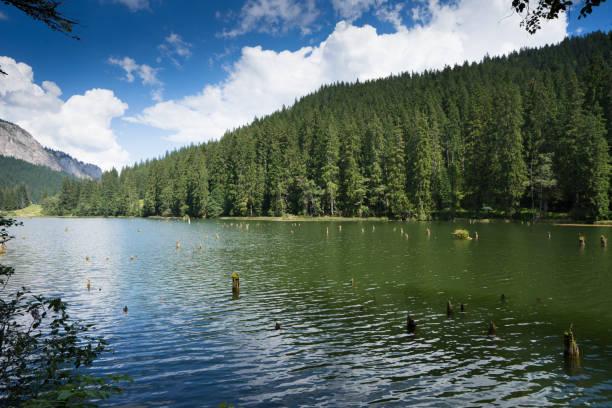 レッド湖のストックフォト - iStock